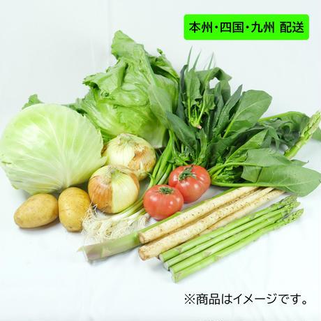 【本州・四国・九州配送】【送料無料】野菜セット、6~8品、3~4人家族5日分、産地直送、兵庫県産の美味しい旬の新鮮野菜の詰め合わせセット