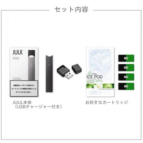 【期間限定BeyondVape】JUULスターターキットICE POD1箱付き