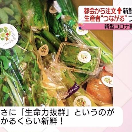 お野菜便ギフト券専用いきいき五島のお野菜便M(送料税込)