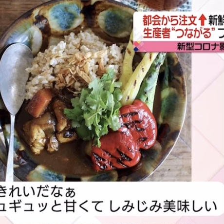 お野菜便ギフト券専用いきいき五島のお野菜便S(送料税込)