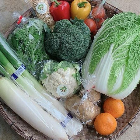 いきいき五島のお野菜便M(送料税込)