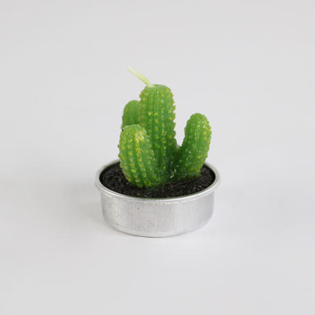a little cactus candle - 6pcs set