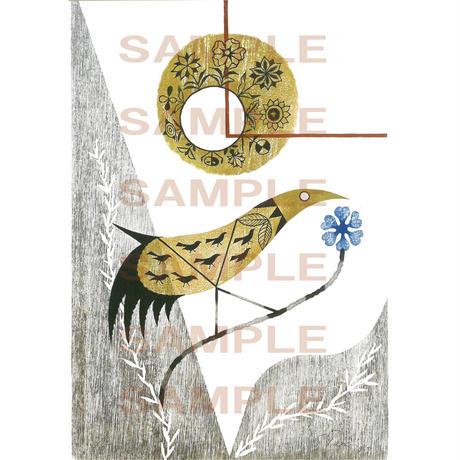 ポストカード 鳥の連作No.4(pl_8078)