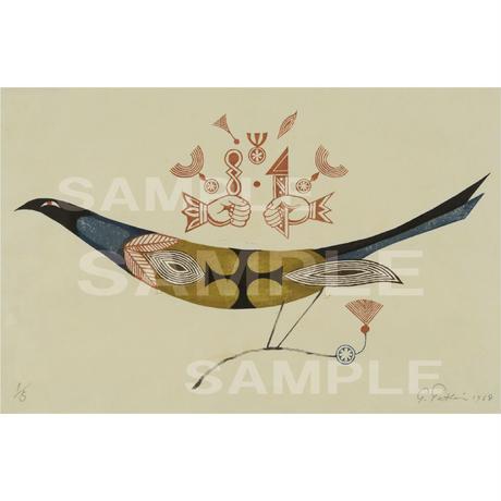 ジークレー版画 《可憐判》鳥の連作No.5 (pl_4396)