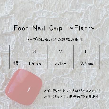 サイズ確認用ネイルチップ