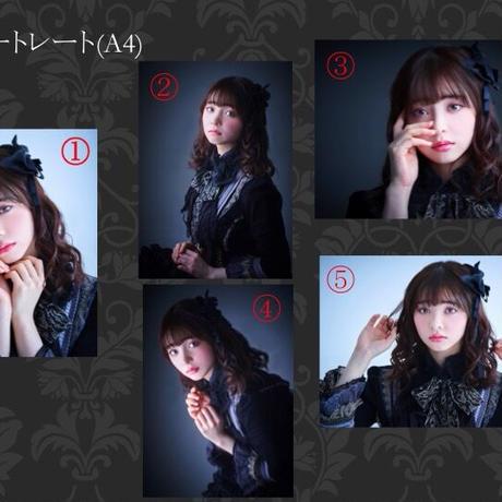 「女王輪舞」ポートレート(A4)