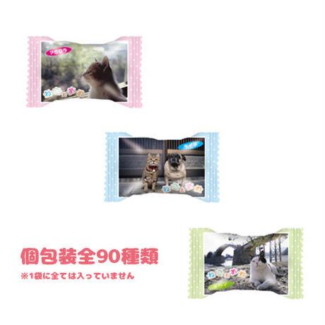 ねことあめ(6袋)