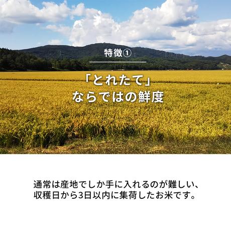 【DOWELL SELECT!】9/30までの期間限定!北海道当別町産『とれたて米』5kg(無洗米ななつぼし100%)