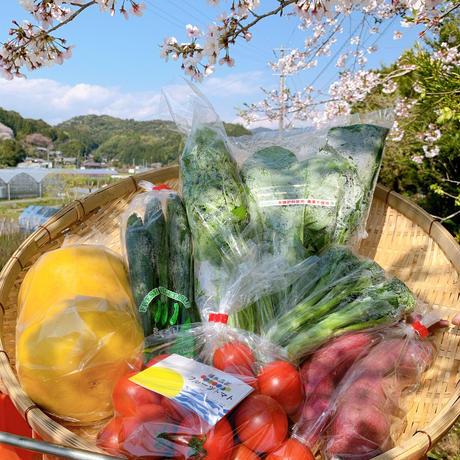 自宅で楽しむイナカデリコの応援野菜8品セット(ボリュームセット)