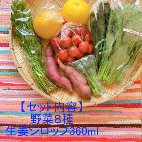 自宅で楽しむイナカデリコの応援野菜8品と生姜シロップセット(ボリュームセット+生姜シロップ360ml)