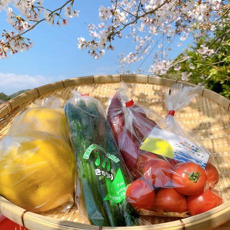 自宅で楽しむイナカデリコの応援野菜5品セット(1-2名用)