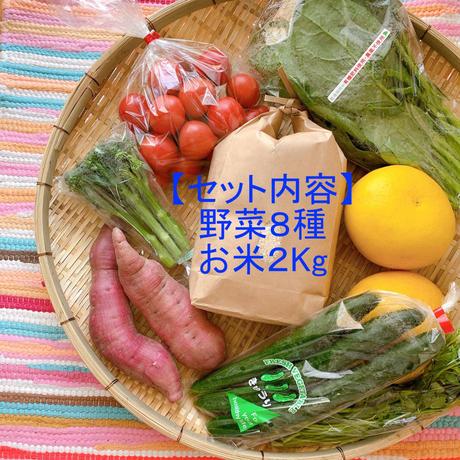 自宅で楽しむイナカデリコの応援野菜8品とお米セット(ボリュームセット+高知県産お米2Kg)
