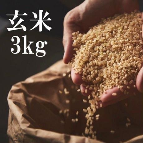 【玄米】稲妻家米3kg (農薬不使用・化学肥料不使用)