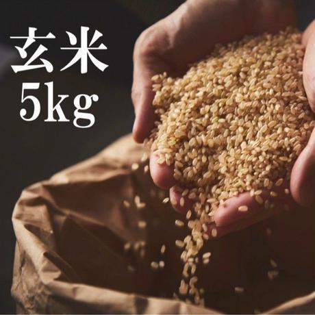 【玄米】稲妻家米5kg (農薬不使用・化学肥料不使用)