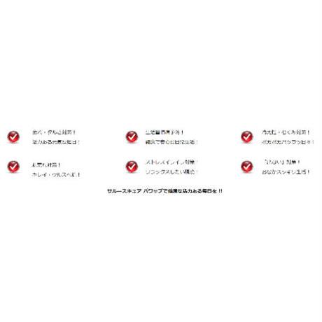 サルースキュア パワップ 活力アップサプリ
