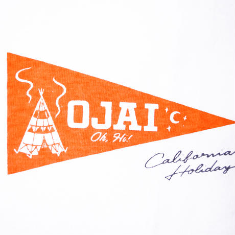 ※CITY PENNANT S/S TEE -5 GRAPHICS- H191-0105