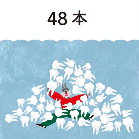 歯 48本