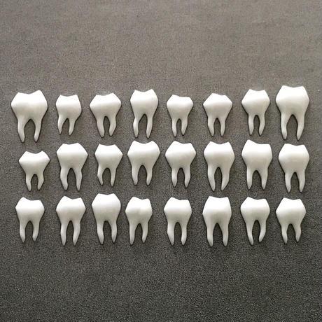歯 24本