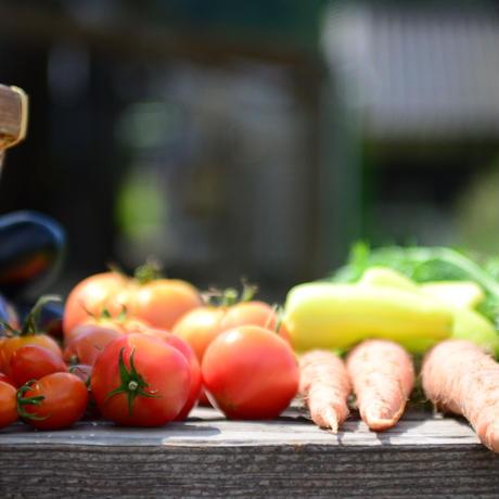 有機JAS野菜 Aセット
