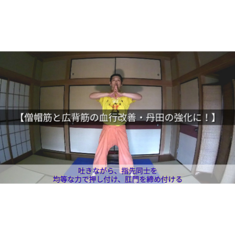 初回無料【TPPK体操その①】僧帽筋と広背筋の血行改善・丹田の強化に!