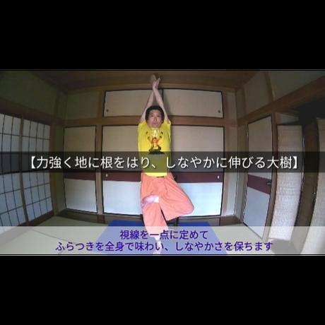 【TPPK体操その⑩】力強く地に根をはり、しなやかに伸びる大樹