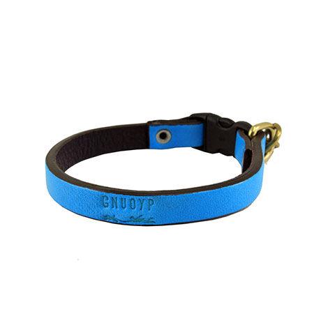 GNUOYP Color x Collar(小型犬)