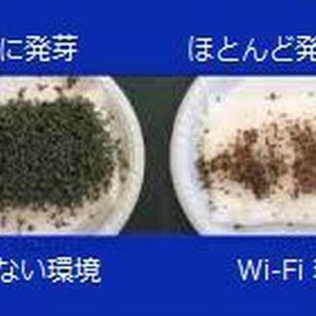 「イオさんの電磁波とアーシングオンライン講座」2021年2月10.11日