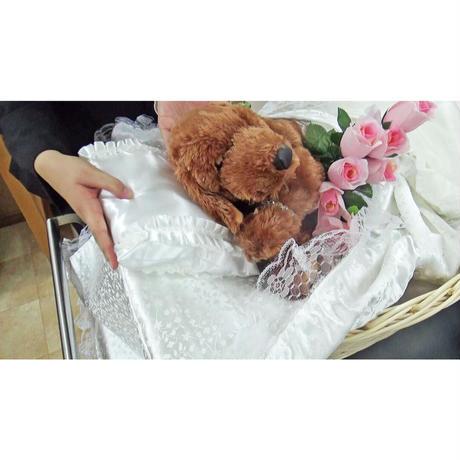 【Sサイズ】ご火葬までのペットの遺体安置は、このパーフェクト1つで充分!