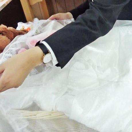 【Mサイズ】ご火葬までのペットの遺体安置は、このパーフェクト1つで充分!
