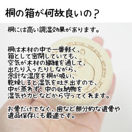 タイムBOX桐【トカゲ】