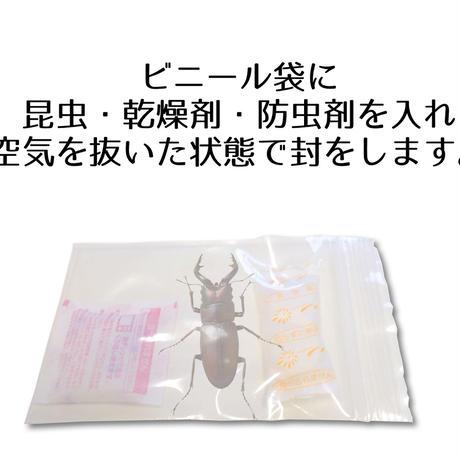 【5匹用】昆虫葬郵送キットワイド