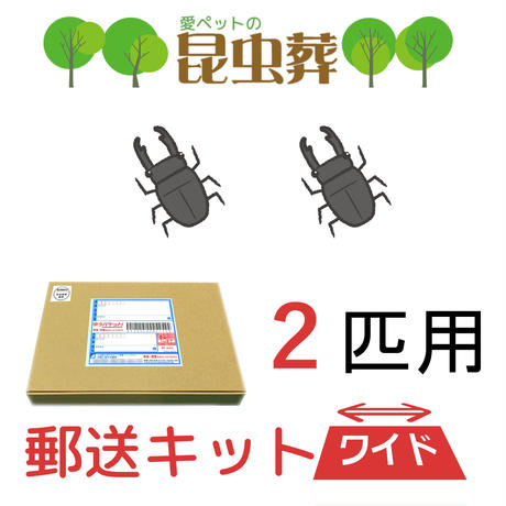 【2匹用】昆虫葬郵送キットワイド