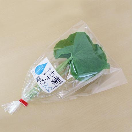 葉わさび(約80g10本程度)