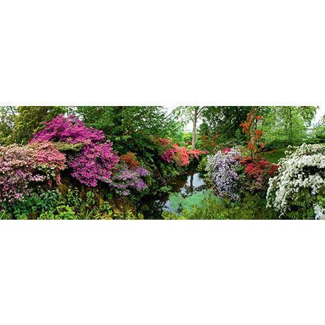 Bodnant Garden : Ed. Humboldt - 29473