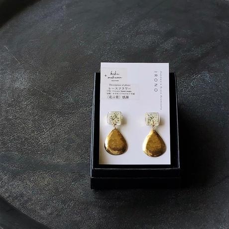 hakumokuren × IRONO <laceflower>