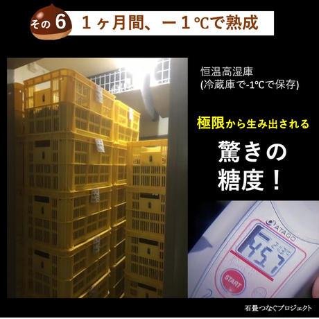 完熟石畳栗のお待ちかねジェラート[6個セット(冷凍発送)]