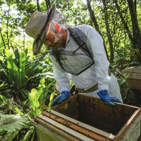 【携帯サイズで蜂蜜生活を】石垣島はちみつ200g ソフトボトル