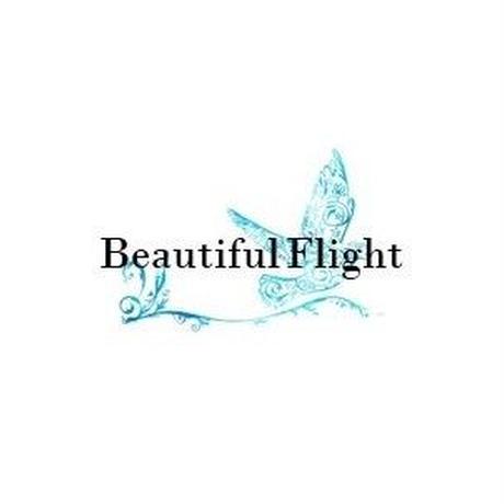 イスタ オリジナルブレンド  〜Beautiful Flight〜【中煎り】ご家庭用お得サイズ 豆or粉 250g
