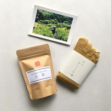 [ギフトセット]郡上産手摘み茶とお茶染めシルクウール5本指靴下