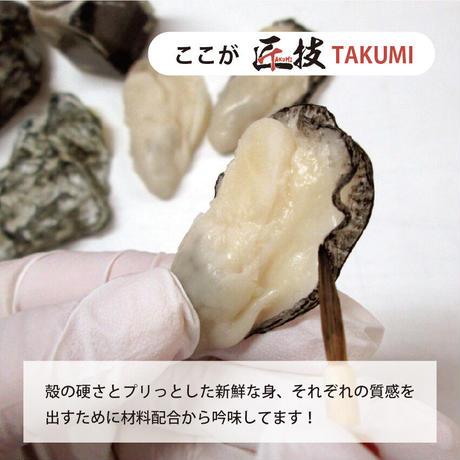 匠技(TAKUMI)マルチチャーム 牡蠣(殻付き)