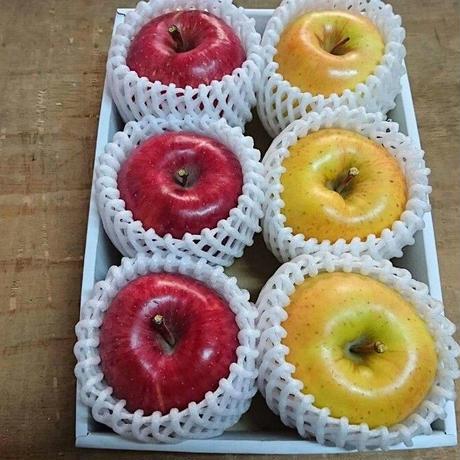 先行予約受付中【りんご2kg】きたろう&サンふじ ※12月上旬より順次発送