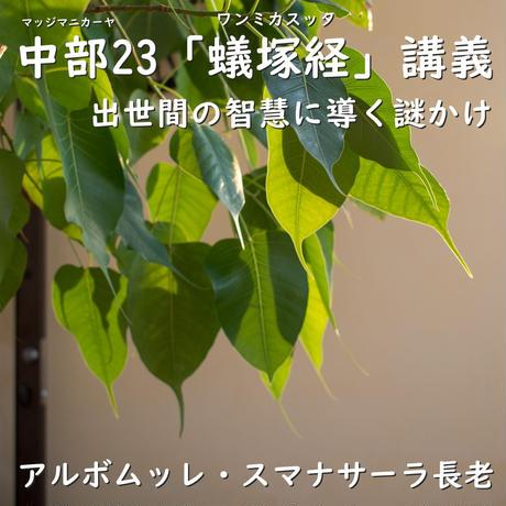 中部23「蟻塚経」講義――出世間の智慧に導く謎かけ(MP3音声zip圧縮)