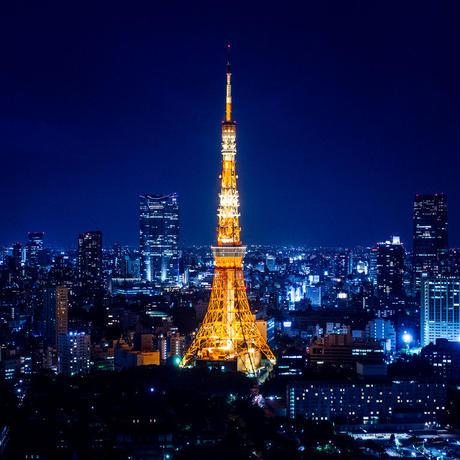 どこでも東京3時間(案内料金)
