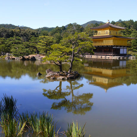 Closed to the Public Temple Excursion in Kyoto(Guide 6H)