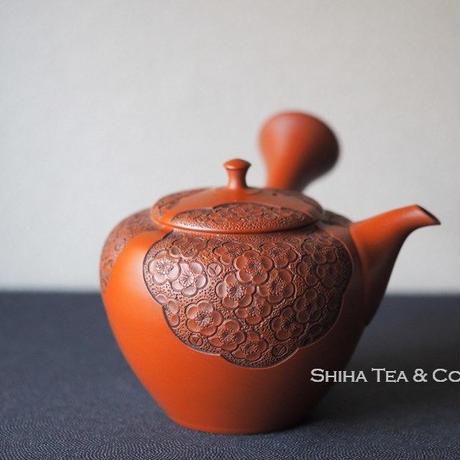 Shunen 2nd 舜園急須, Red Clay plum blossoms Relief Carving Ceramic Kyusu Teapot, Tokoname, Japan