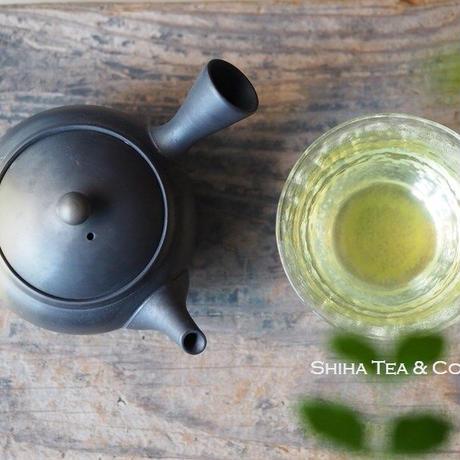 Hakusan Green Smoke Black Gradation Kyusu Teapot 白山緑黒