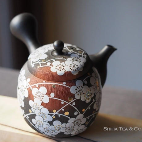 White Plum Ume flolwer, red clay smoked black, full carving Japanese Kyusu Teapot