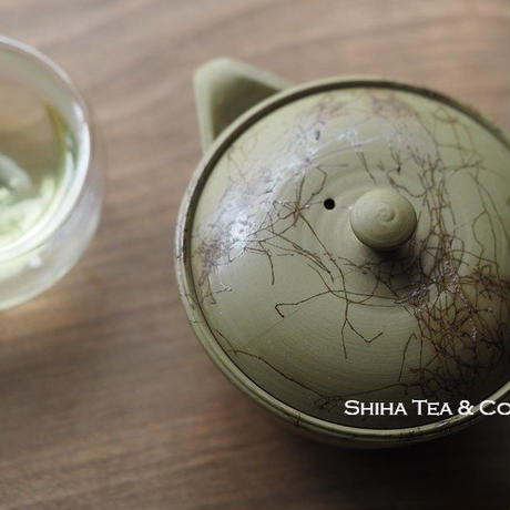 白山藻掛宝瓶黄緑 白山宝瓶 HAKUSAN Warm Green Clay with Seaweed HOUHIN Teapot