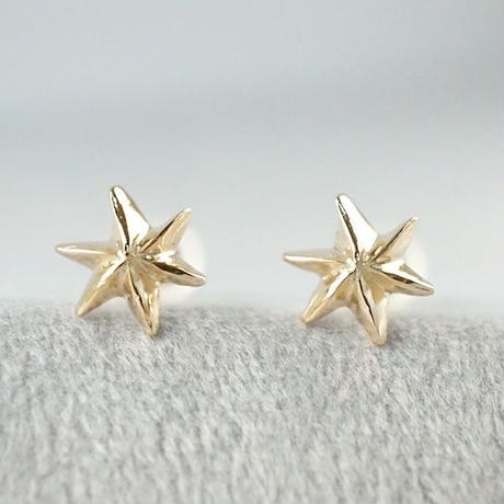 K10  Star earrings