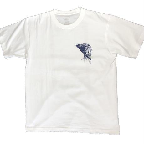 19-2002 葛飾北斎 「桜に鷹」メンズTシャツ Mens男性用